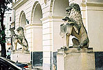 Lviv Photo Gallery. Lions near the City Hall